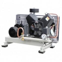 Электрический поршневой компрессор REMEZA СБ4-500.F55